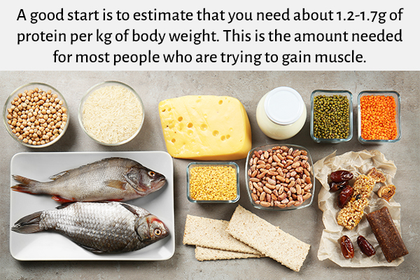 protein intake is a must for muscle building
